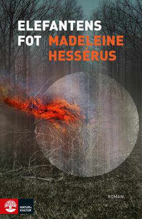 Image result for Madeleine Hessérus: Elefantens fot.